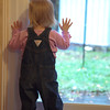 """First day with new door: """"Bird!""""  Anna really enjoyed being able to see the birds from her natural height."""