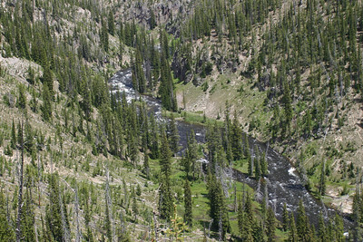 The river by the upper and lower falls of Yellowstone River