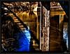 BayouSwamp