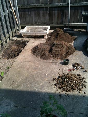 Project: Garden 2011