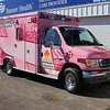 SWA Pink Ribbon W-481 Ford (ps)