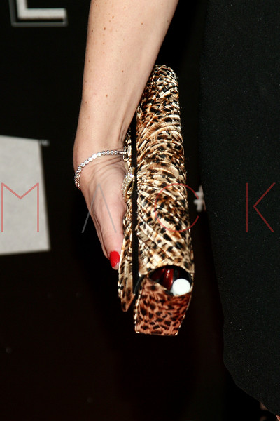 NEW YORK, NY - DECEMBER 18:  Renee Graziano (purse detail) attends 2011 VH1 Divas Celebrates Soul at the Hammerstein Ballroom on December 18, 2011 in New York City.  (Photo by Steve Mack/S.D. Mack Pictures)
