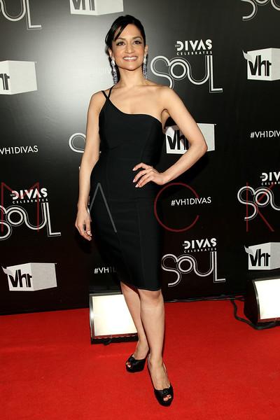 NEW YORK, NY - DECEMBER 18:  Archie Punjabi attends 2011 VH1 Divas Celebrates Soul at the Hammerstein Ballroom on December 18, 2011 in New York City.  (Photo by Steve Mack/S.D. Mack Pictures)