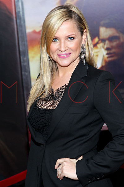 """NEW YORK, NY - DECEMBER 04:  Jessica Capshaw attends the """"War Horse"""" world premiere at Avery Fisher Hall at Lincoln Center for the Performing Arts on December 4, 2011 in New York City.  (Photo by Steve Mack/S.D. Mack Pictures)"""