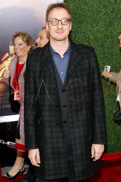 """NEW YORK, NY - DECEMBER 04:  David Thewlis attends the """"War Horse"""" world premiere at Avery Fisher Hall at Lincoln Center for the Performing Arts on December 4, 2011 in New York City.  (Photo by Steve Mack/S.D. Mack Pictures)"""