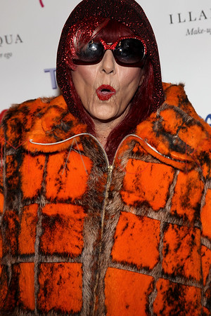 NEW YORK, NY - FEBRUARY 11:  The Patricia Field Disco Valentine's Ball at Capitale on February 11, 2011 in New York City.
