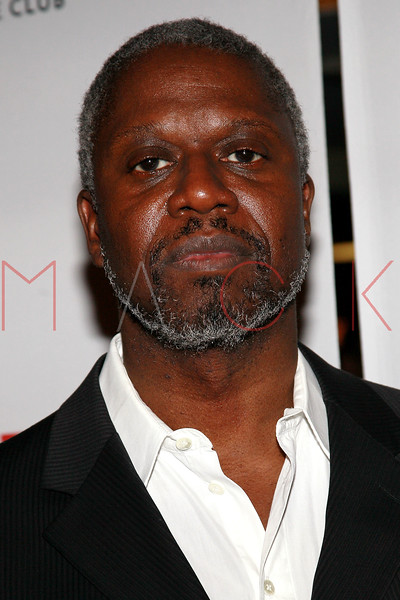 """NEW YORK, NY - FEBRUARY 01:  Andre Braugher attends the party for the Manhattan Theatre Club's """"The Whipping Man"""" opening night at the Beacon on February 1, 2011 in New York City.  (Photo by Steve Mack/S.D. Mack Pictures) *** Local Caption *** Andre Braugher"""