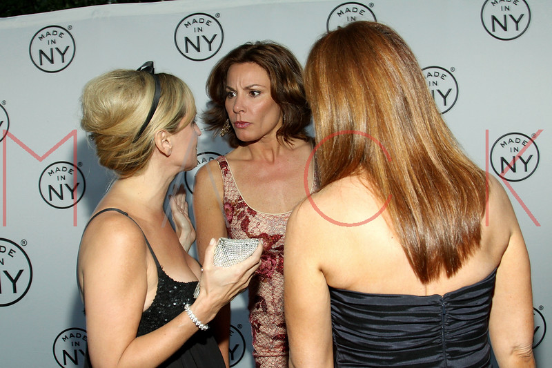 NEW YORK, NY - JUNE 06:  Sonja Morgan, Countess LuAnn de Lesseps and Jill Zarin attend the 6th annual Made In NY awards at Gracie Mansion on June 6, 2011 in New York City.  (Photo by Steve Mack/S.D. Mack Pictures) *** Local Caption *** Sonja Morgan; LuAnn de Lesseps; Jill Zarin
