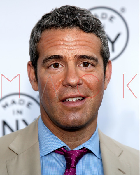 NEW YORK, NY - JUNE 06:  Andy Cohen attends the 6th annual Made In NY awards at Gracie Mansion on June 6, 2011 in New York City.  (Photo by Steve Mack/S.D. Mack Pictures) *** Local Caption *** Andy Cohen