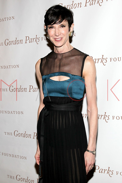 New York - June 01: Amy Fine Collins in attendance at The Gordon Parks Foundation Awards Dinner and Auction at Gotham Hall on Wednesday, June 1, 2011 in New York, NY.  (Photo by Steve Mack/S.D. Mack Pictures)