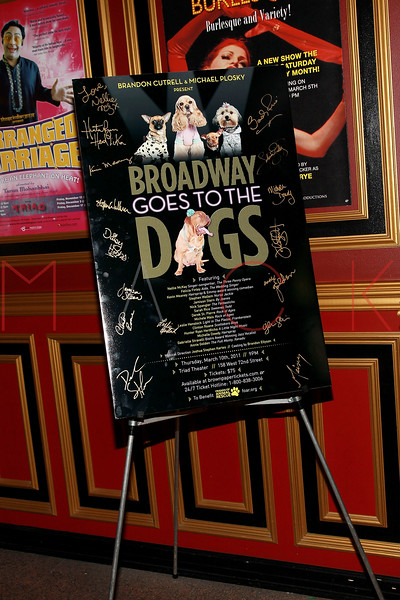 """NEW YORK, NY - MARCH 10:  Atmosphere at the """"Broadway Goes To The Dogs"""" To Benefit Friends Of Animal Rescue event at The Triad Theater on March 10, 2011 in New York City.  (Photo by Steve Mack/S.D. Mack Pictures)"""