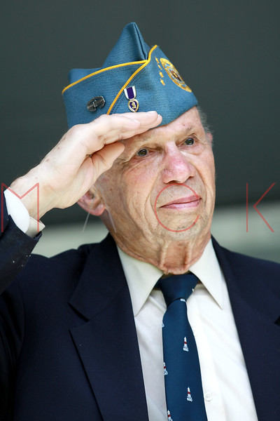 NEW YORK, NY - MAY 30:  A Veteran salutes as he attends the 2011 Memorial Day Parade on May 30, 2011 in the Brooklyn Borough of New York City.  (Photo by Steve Mack/S.D. Mack Pictures)