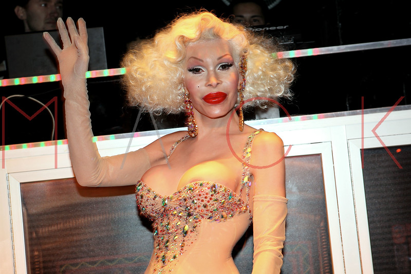 NEW YORK, NY - NOVEMBER 20:  Amanda Lepore attends the Blind Tiger grand opening on November 20, 2011 in New York City.  (Photo by Steve Mack/S.D. Mack Pictures) *** Local Caption *** Amanda Lepore