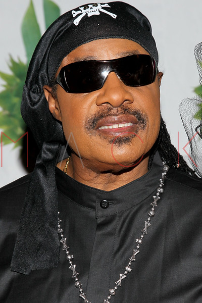 NEW YORK, NY - OCTOBER 28:  Stevie Wonder attends 16th Annual Bette Midler's New York Restoration Project's Hulaween at The Waldorf=Astoria on October 28, 2011 in New York City.  (Photo by Steve Mack/S.D. Mack Pictures) *** Local Caption *** Stevie Wonder
