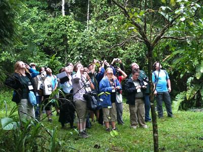 2011 Costa Rica Program