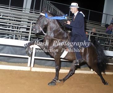 CLASS 26   OPEN SPECIALTY   RIDERS CUP
