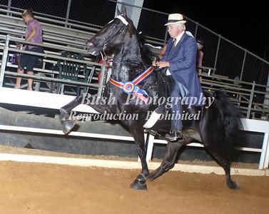 CLASS 29  WALKING HORSE STAKE
