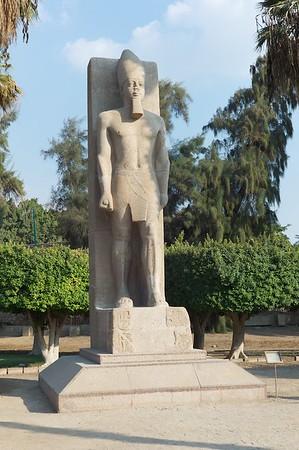 2011Egypt177