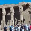 2011Egypt51