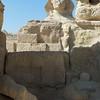 2011Egypt164