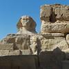 2011Egypt163