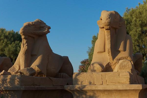 2011Egypt24