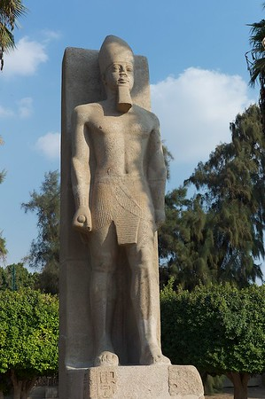 2011Egypt176
