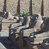 2011Egypt4
