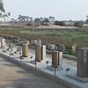 2011Egypt168