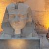 2011Egypt27