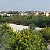 2011Egypt166