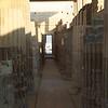 2011Egypt184