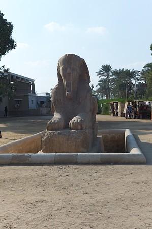 2011Egypt174