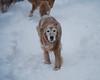 0395 Sasha Feb 2 2011