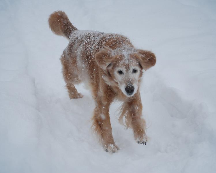 0389 Sasha Feb 2 2011