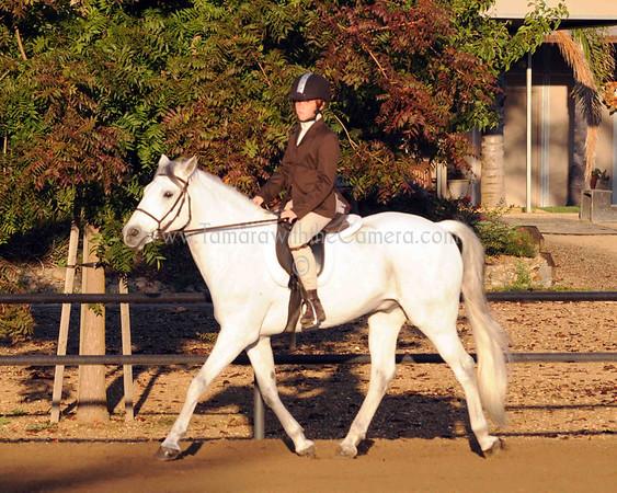 Under Saddle Classes