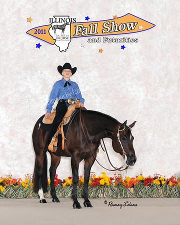 2011 ILQHA Fall Show