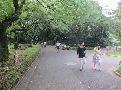Shinjuku Gyeon (Gardens) in Shinjuku
