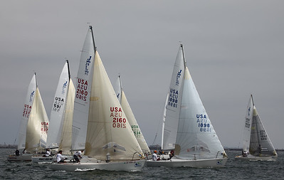 2011  LBRW - Friday - C Course - J24 & J80's  6