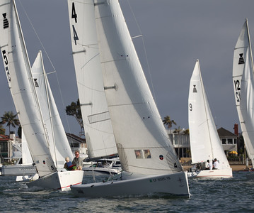 BYC Family Race   15