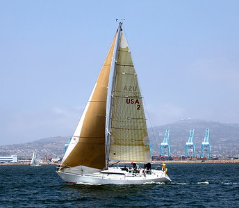 DPYC Around Catalina Race  41