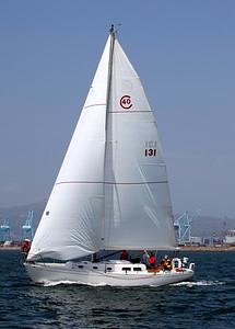 DPYC Around Catalina Race  28