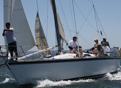 Gator - Yachting Cup 2011  2