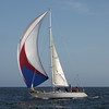 Reliance - BYC 66 Race #1