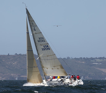 Super Gnat - Yachting Cup 2011  9