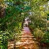 Clark Gardens 02-08-11