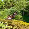 Clark Gardens 06-04-11