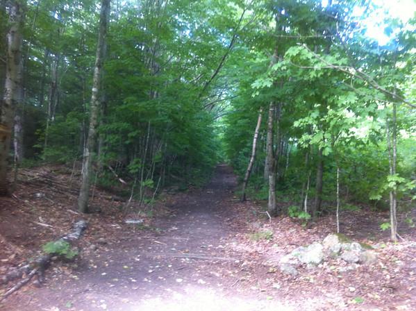 Pemi Trail Run and Peak Bag