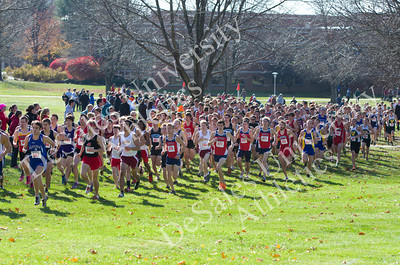 2011 NCAA Cross Country Championships