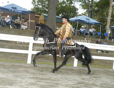 CLASS 7  WESTERN PLANTATION PLEASURE LITE SHOD  SPECIALTY